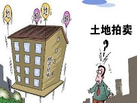 """上海土地新年""""第一拍""""仅以底价成交"""